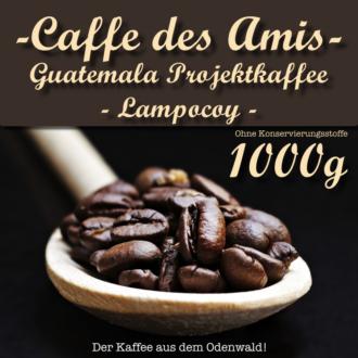 CDA_Guatemala-Projekt-Lampocoy-1000g