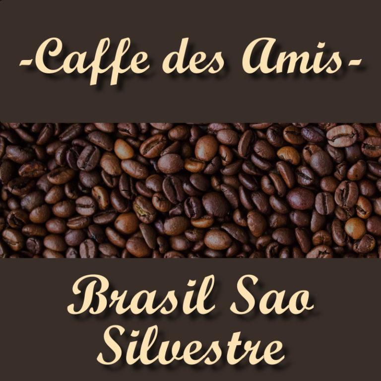 CDA_Kategorie_Brasil-Sao-Silvestre