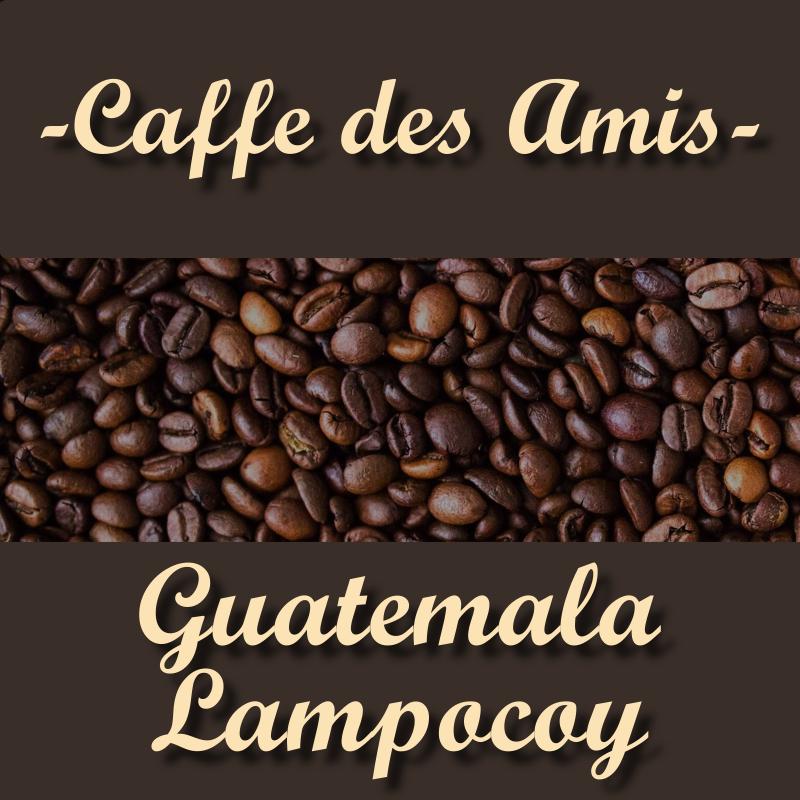 CDA_Kategorie_Guatemala-Lampocoy