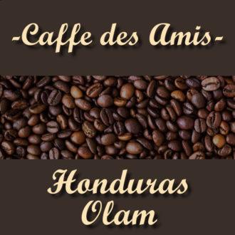 CDA_Kategorie_Honduras-Olam